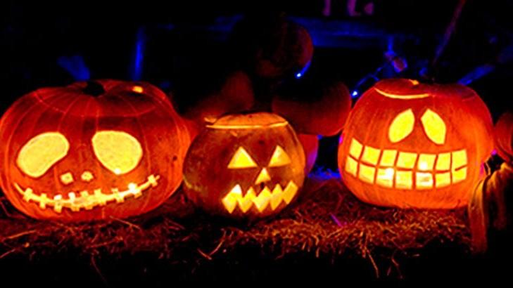 T dTallers. fantasmes, aranyes i monstres per decorar casa teva a la nit més terrorífica